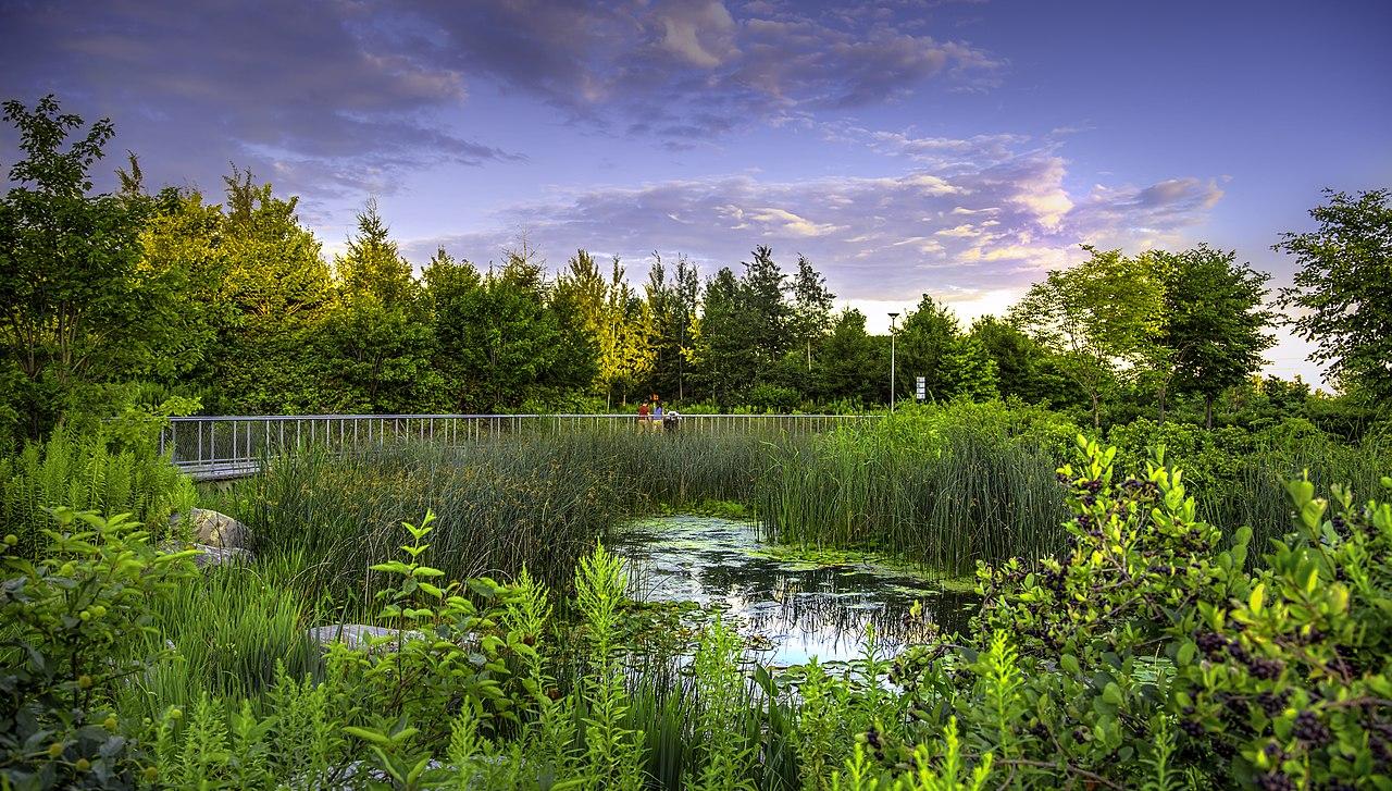 Photo of Corktown Commons park in Toronto