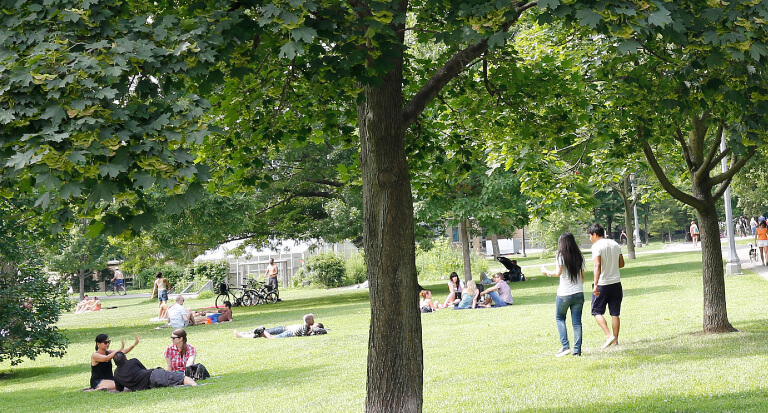 Photo of park with people enjoying themselves. What same, less, rather, while, yet, opposite, much as, either as a result, hence, consequently, therefore, and so in conclusion. Yet because, so, due to, while, since, therefore same, less, if rather late.