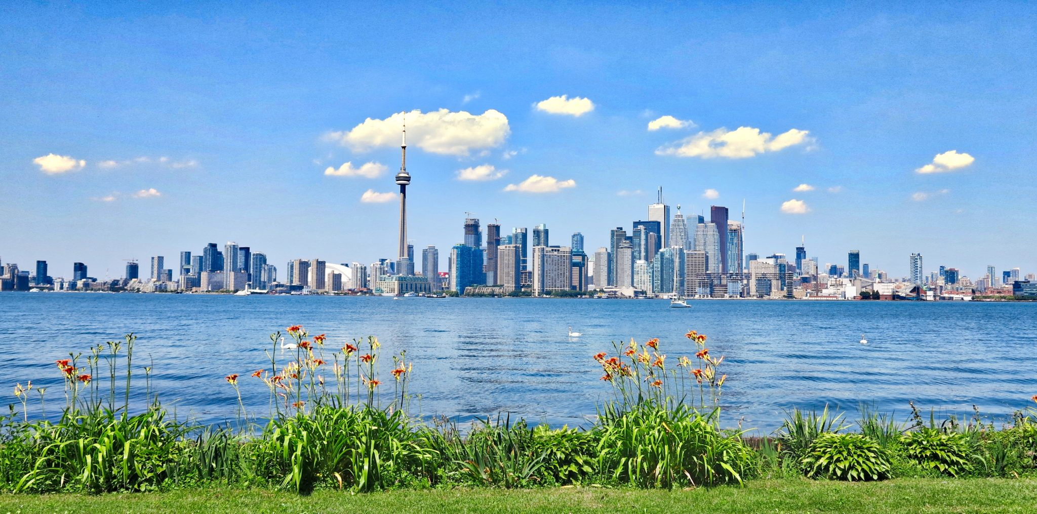 Toronto Waterfront, as we see it from Toronto Island.