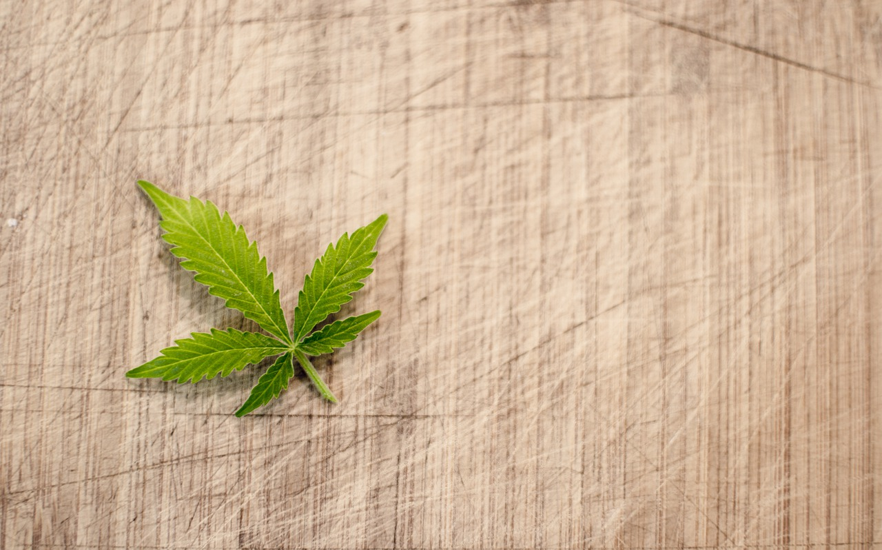 Cannabis leaf on a cloth.