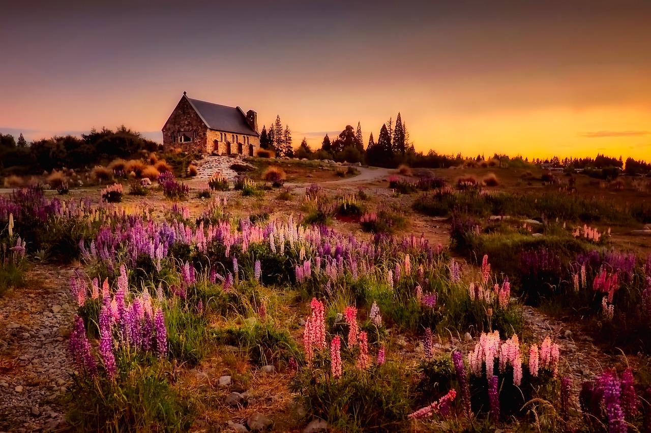 Sunset, custom house and nature
