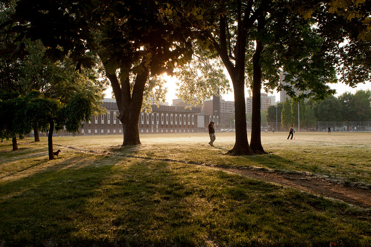Photo of sunrise and Moss Park