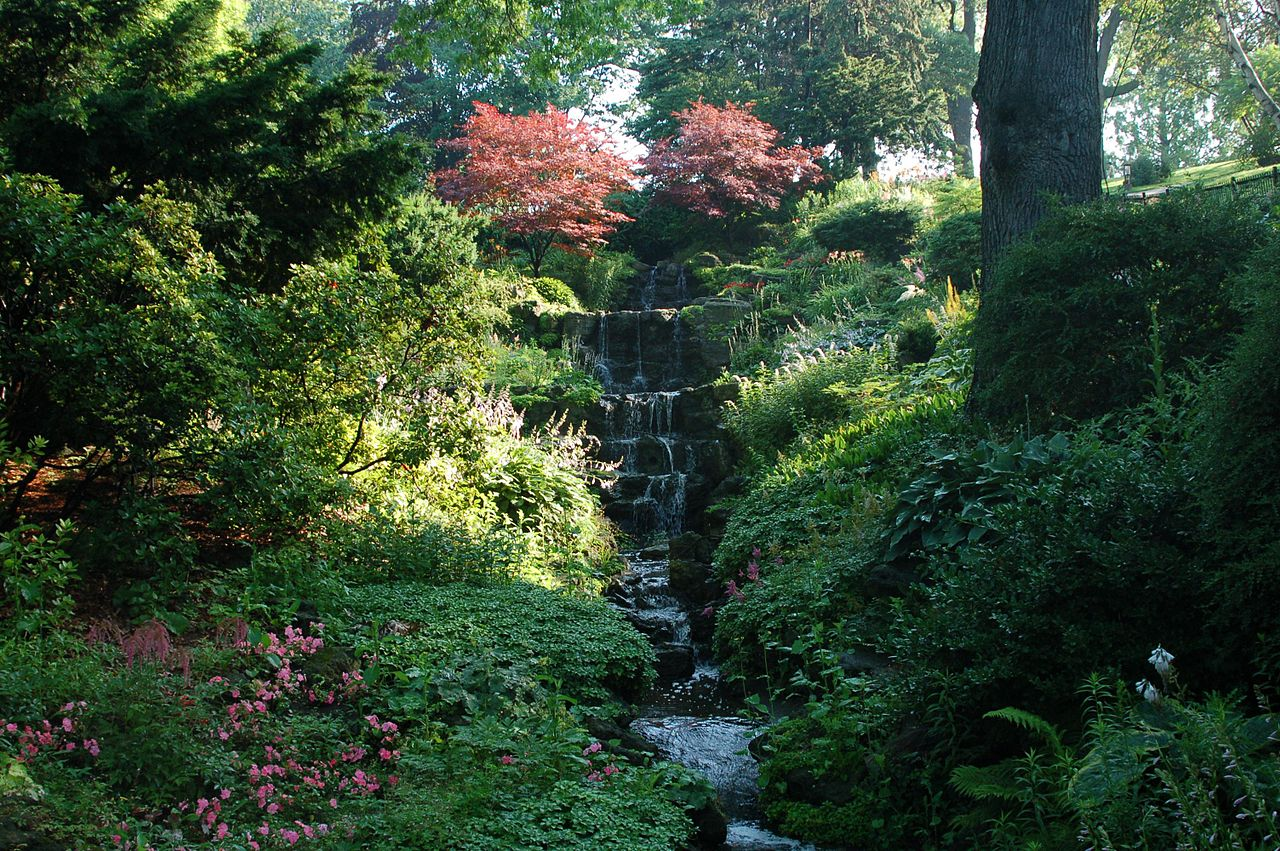 Photo of waterfall and trees in High Park Toronto.