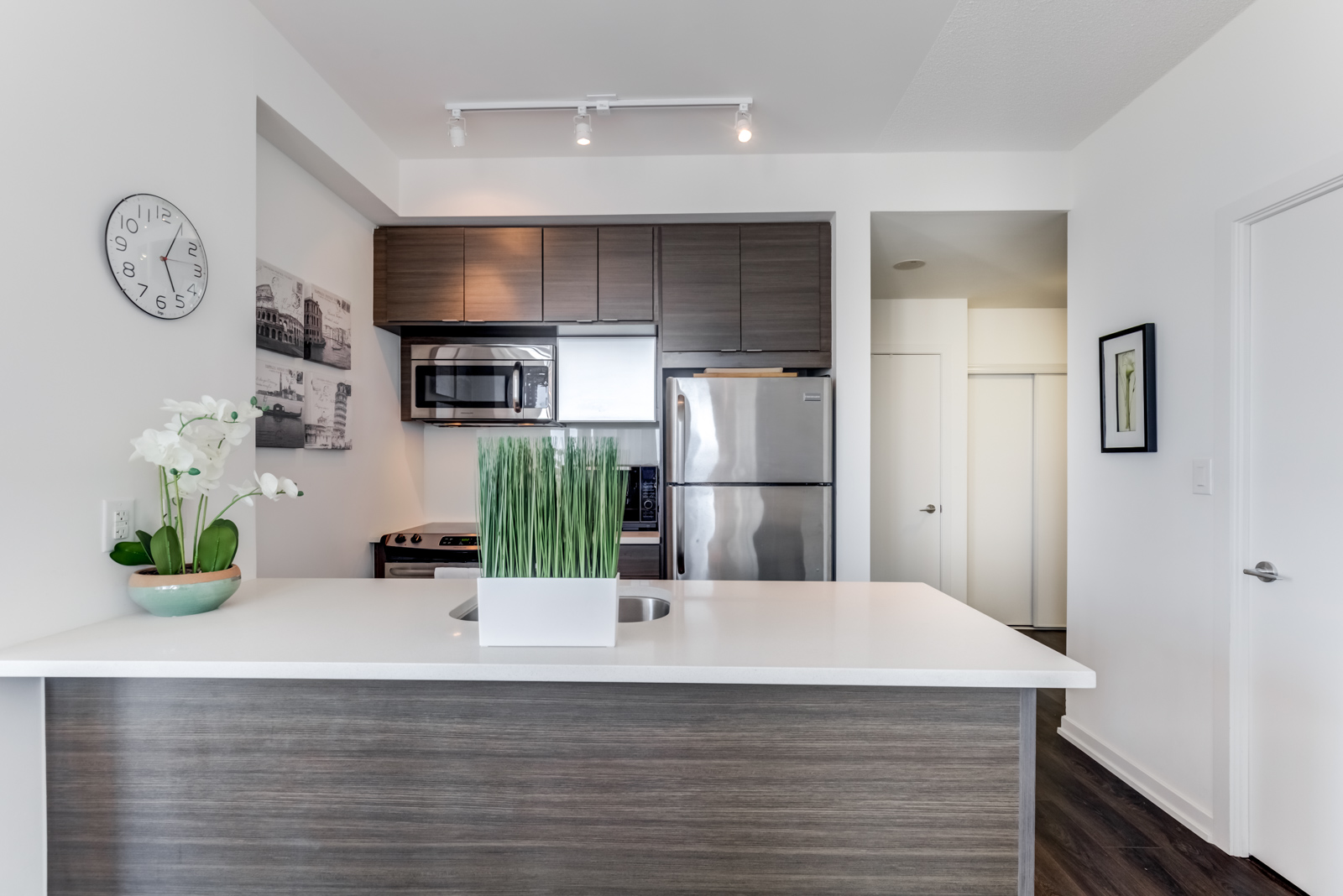 Breakfast bar with white granite counter, green plant and kitchen appliances in background.