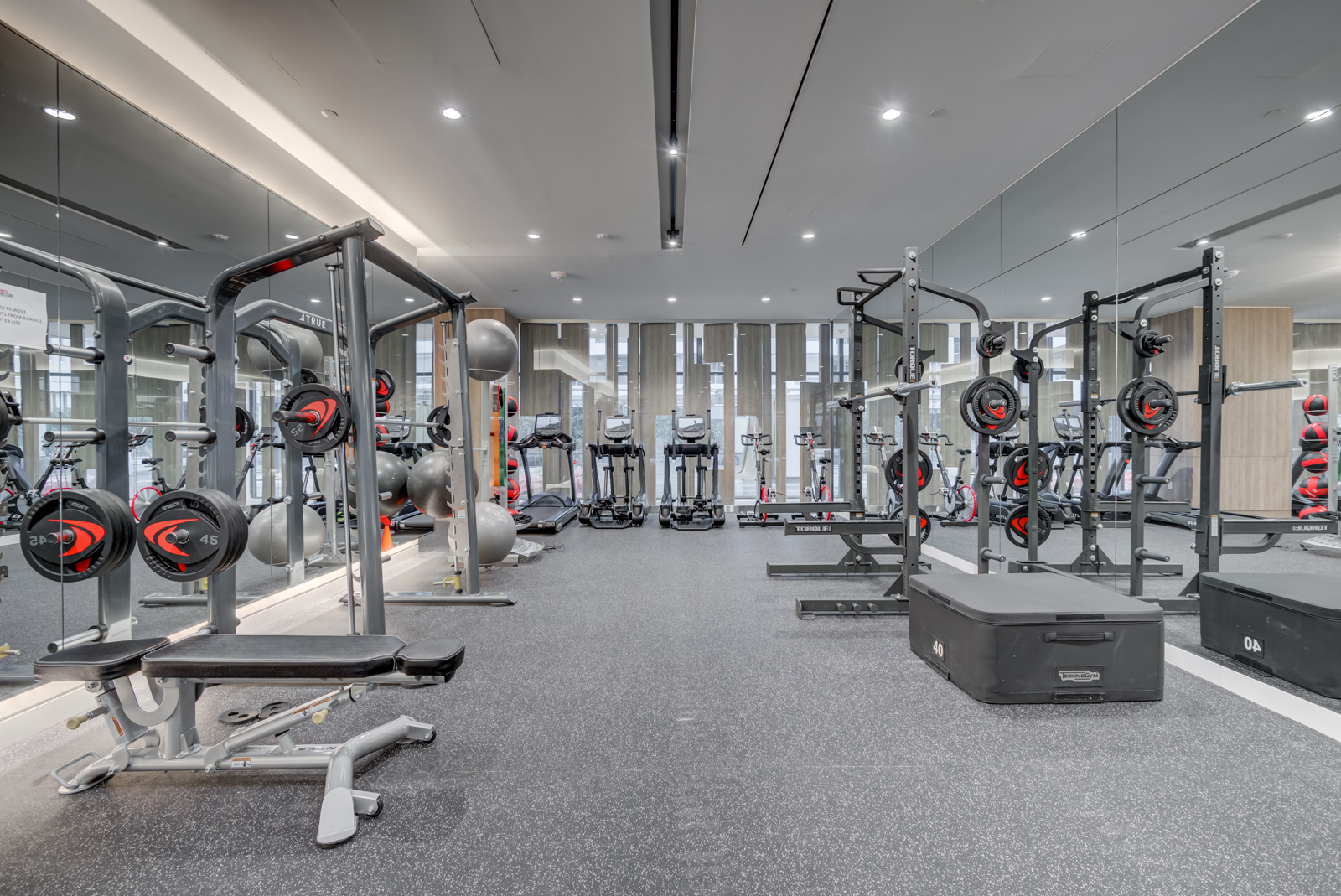 Modern gym at Minto Condos with weights, treadmills, exercise bikes and exercise balls.