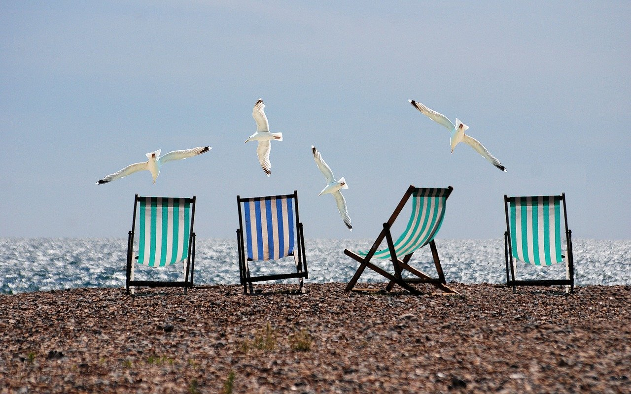 Four empty blue and white deck chairs and flying seagulls.
